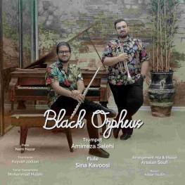 دانلود آهنگ امیررضا صالحی به نام Black Orpheus